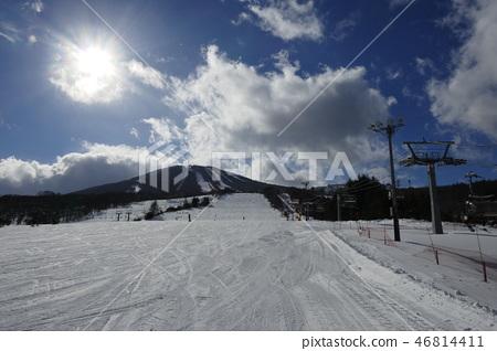 Appi Kogen滑雪場Shirakaba坡中央坡 46814411