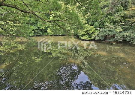 an Zen garden, Ritsurin Park, Takamatsu, Shikoku 46814758
