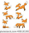 Collection of Some Cute Foxes 46818190