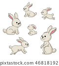 Collection of Some Cute Rabbits 46818192