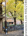Bicycle parking inside the University of Tokyo 46822586
