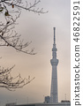 Tokyo Skytree view from Sumida Park 46822591