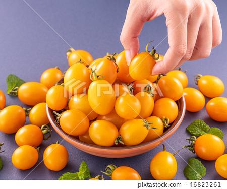 小茄子茄子茄子藍色背景水水果新鮮女手櫻桃番茄櫻桃番茄 46823261