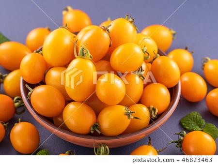 小茄子茄子茄子靛藍背景水水果新鮮櫻桃番茄櫻桃番茄 46823463