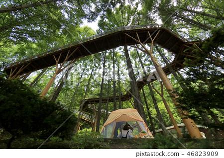 숲속캠핑 46823909