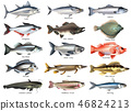 Fishes Icons Set 46824213