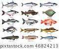 鱼 一组 一套 46824213