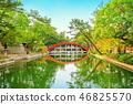 Bridge - Sumiyoshi Taisha Shrine 46825570