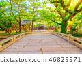 Sumiyoshi Taisha Shrine 46825571