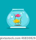Fish in Fishbowl. Aquarium Vector Illustration. 46830826