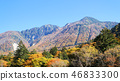 오쿠히다, 단풍, 다카야마 시 46833300