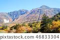 오쿠히다, 단풍, 다카야마 시 46833304