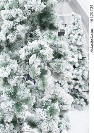 女孩在人造雪的庭院 46839734
