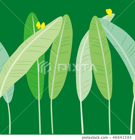 模式飛蛾和蝴蝶綠 46841593