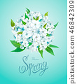 Spring background with Phlox 46842309