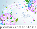 Spring background with Phlox 46842311