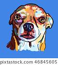 狗 狗狗 向量 46845605