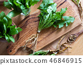 Whole dandelion plant including root  46846915