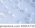 Aerial view of snowshoes walker in snowy forest 46854730