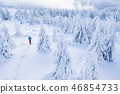 Aerial view of snowshoes walker in snowy forest 46854733