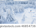 Aerial view of snowshoes walker in snowy forest 46854736