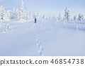 Aerial view of snowshoes walker in snowy forest 46854738