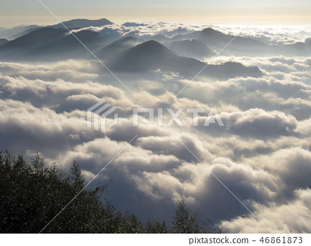 嘉義阿里山隙頂雲海 46861873