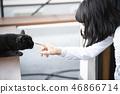 도둑 고양이와 접촉하는 여성 46866714
