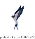 鸟儿 鸟 矢量 46875527