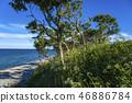 Steep coast in Staberhuk 46886784