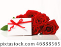 Valentine's Day concept theme with roses 46888565