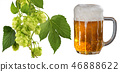 Glass of beer and hop cones isolated 46888622