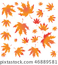Autumn leaves background  46889581
