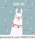 llama, animal, lama 46893380