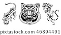 Asian tigers in vintage japanese style for logo. Face Close up. Wild animals cats. Predators from 46894491