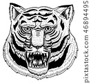 Head of Wild Animal Predator. Asian Tiger Face. Japanese Style Portraits. Hand drawn Engraved 46894495