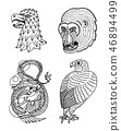 Head of Wild Animal Predator. Eagle Falcon Monkey Face and Chinese Dragon. Japanese Style Portraits 46894499