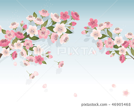 Vector illustration of cherry tree in spring 46905468