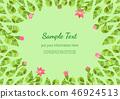 bloom,blossom,flower 46924513