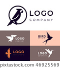Branding for travel, zooshop or other company 46925569