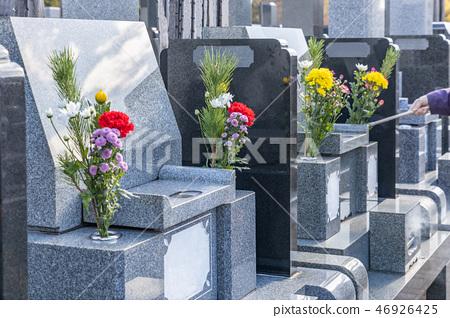 格雷夫的墳墓 46926425