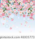 花朵 花 花香 46935773