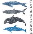 바다의 큰 생물 46942663