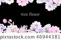 好看的玫瑰花和牡丹花花卉 46944381