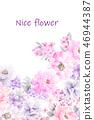 好看的玫瑰花和牡丹花花卉 46944387