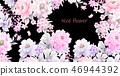好看的玫瑰花和牡丹花花卉 46944392