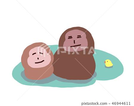 Monkey soaked in water / hot spring monkey 46944611