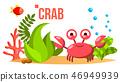 Crab Vector. Sea, Ocean Bottom With Seaweed And Fish. Isolated Flat Cartoon Illustration 46949939