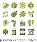 kiwi icon set 46970674