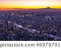 """""""日本的最佳景觀""""東京的夜景 - 富士山的景色""""從天空樹觀景台"""" 46979791"""